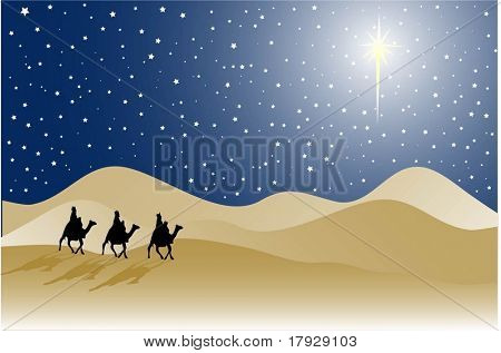 Three wise men - vector