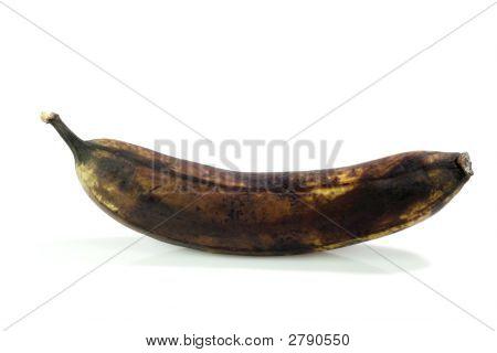 Dead Banana