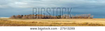 Alberta Farm In The Autumn
