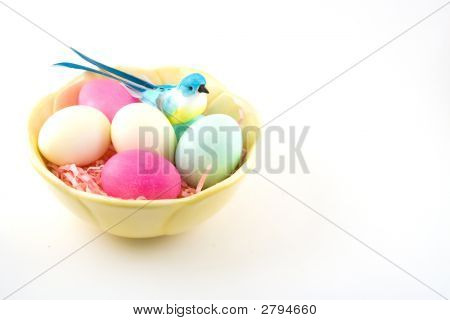 Pretty Bird And Eggs