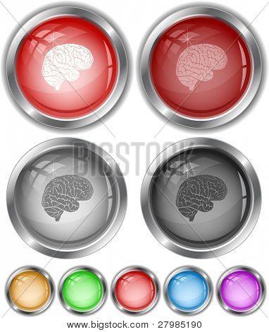 Brain. Vector internet buttons.