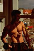 Sportsman, Athlete With Muscles Does Exercises With Dumbbells Near Window. Man With Torso, Muscular  poster