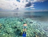 Snorkeling man on the Maldives beach poster