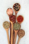 Herb and spice food seasoning in olive wood spoons with fennel, himalayan salt, chili peppers, peppe poster
