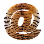 Tiger email sign - 3d Arobase symbol Feline fur isolated on white background. This alphabet is perfe poster