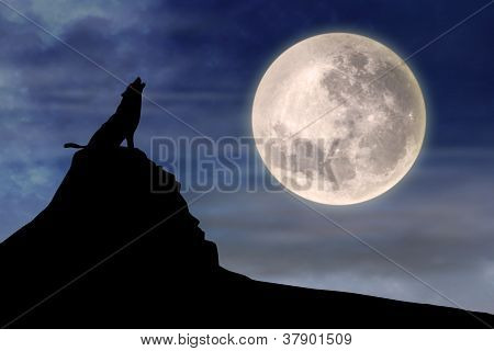 Wolf Hhttp://www.bigstockphoto.com/account/uploads/contribute?edit=37901509#catowling At Full Moon 1