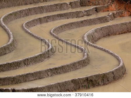 Terraced Rice Fields in Mu Cang Chai