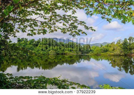 Landscape of natural basin