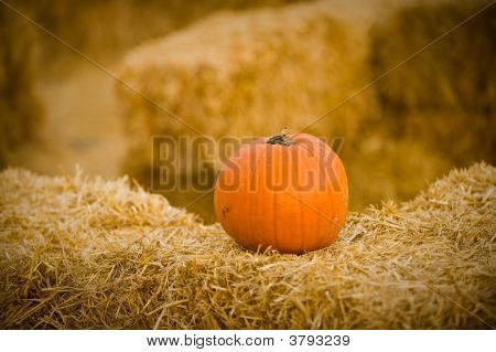 Pumpkin On Hay