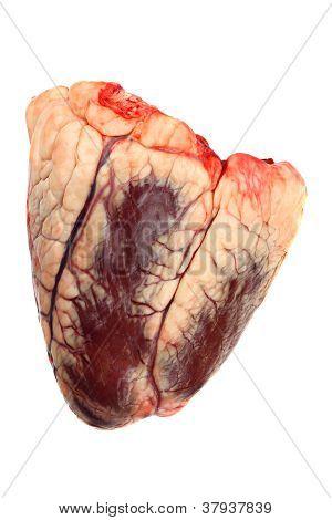 Rindfleisch-Herz
