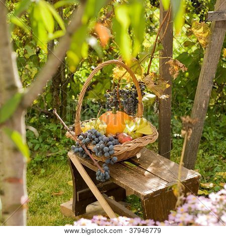 Autumn Basket..