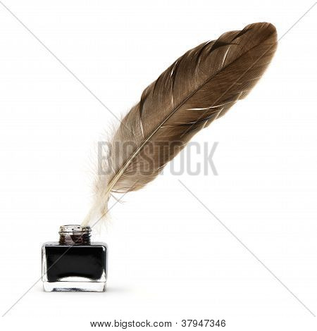 Feather Pen Into The Inkwell.