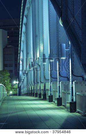 Metallic Bridge Vertical