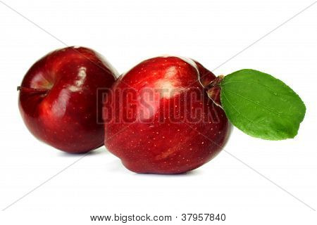 Two Apples Isoalted On White