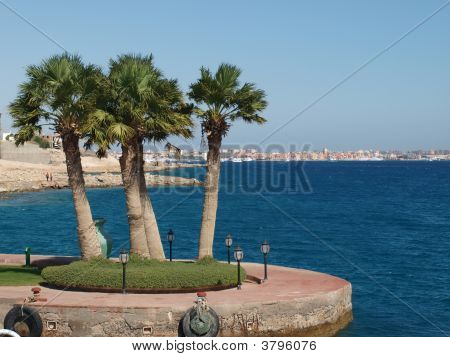 Hurghada In Day View