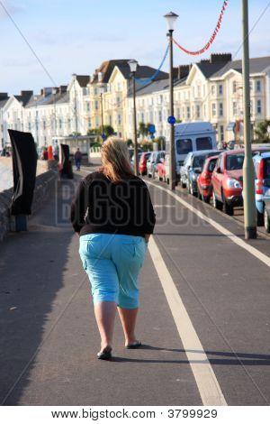Fat Bottomed Girl