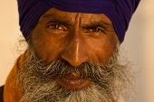 stock photo of punjabi  - Portrait of Indian sikh man in turban with bushy beard - JPG
