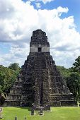Temple Of The Great Jaguar In Tikal