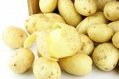 stock photo of solanum tuberosum  - Close up of a peeled Potato - JPG