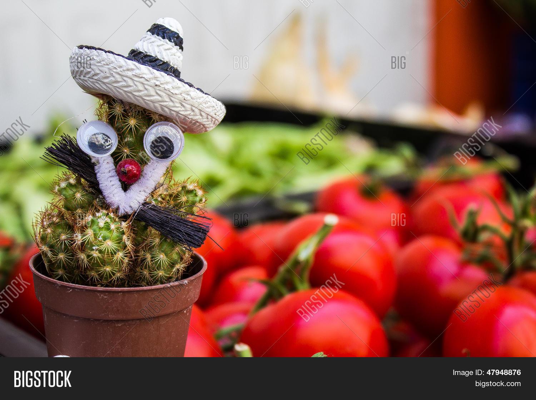 Verduras-tomate-Hierro en impresión de transferencia la camiseta