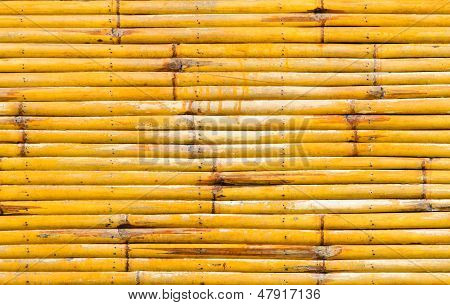 Yellow Bamboo Wall Texture Background