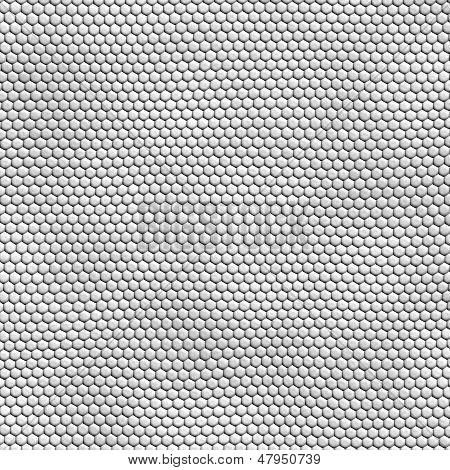 Seamless White Snakeskin Texture