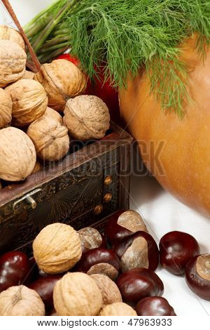 Chest with nuts, walnuts, pumpkin and dill