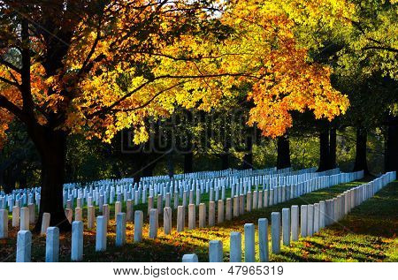 Arlington National Cemetery in Autumn