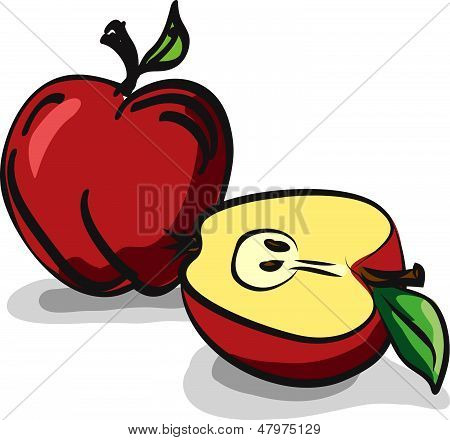Red Delicious Apple fruits sketch drawing vector set