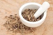 stock photo of ginseng  - Ginseng root herb in a mortar with pestle and loose over papyrus background - JPG