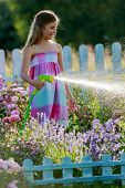 Watering, flower garden - beautiful girl watering roses with garden hose in the garden
