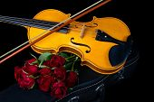 image of fret  - Violin on carry red case with sheet music with red roses - JPG