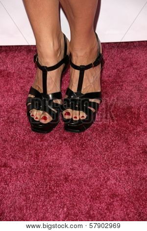 Sheryl Crow's shoes  at the concert to promote the 10th Anniversary of Yoplait's Save Lids To Save Lives Program. The Wiltern Theatre, Los Angeles, CA. 10-10-08