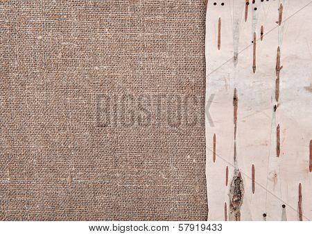 Birch Bark On Burlap Background