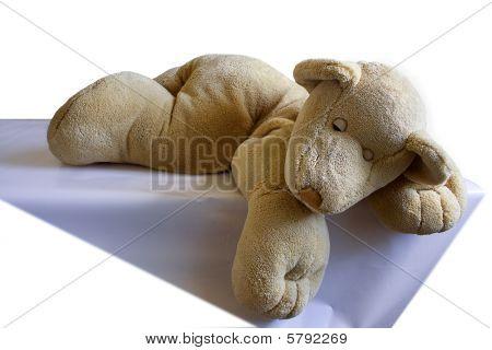 The Funny Plush Sleeping Bear - Cub