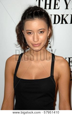 Christian Serratos  at the Los Angeles Premiere of 'The Yellow Handkerchief'. WGA Theatre, Beverly Hills, CA. 11-25-08