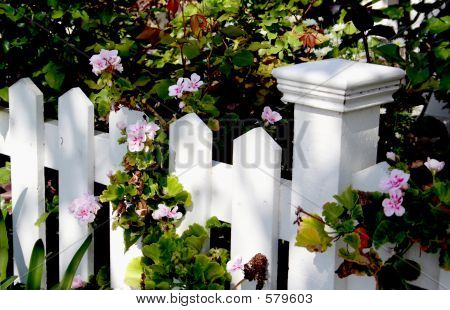 White Picket Fence Detail