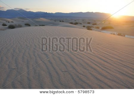 Sand Ripples at Sunrise