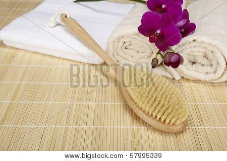 Wellness - Bath Brush, Folded And Rolled Towels
