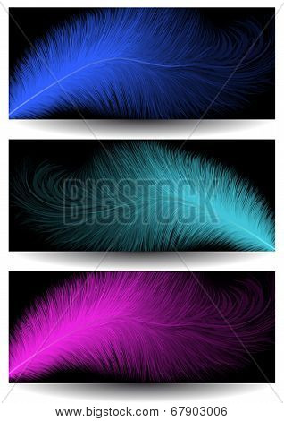 Abstract Feather Banners