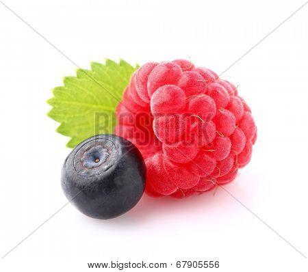 Raspberry with bilberry