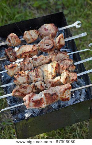 Meat roasted on skewers