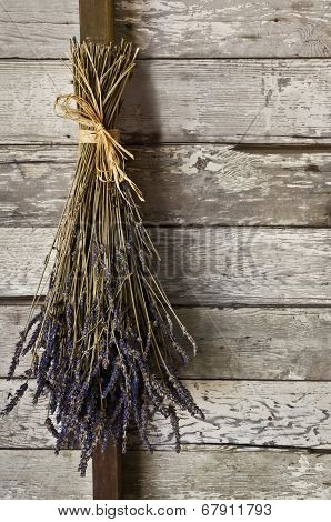 Dried lavender hanging in an old barn