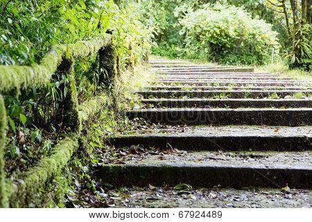 Old Steps