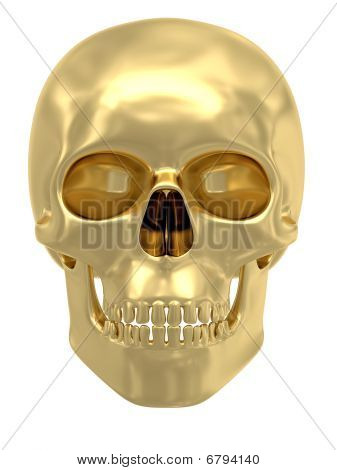Golden Skull Isolated On White