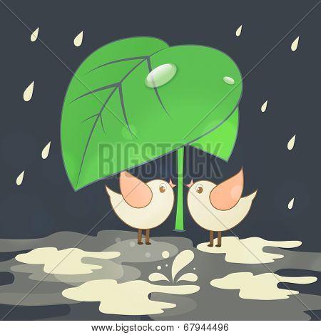 Cute birds making love under big green leaf, romantic monsoon season background.