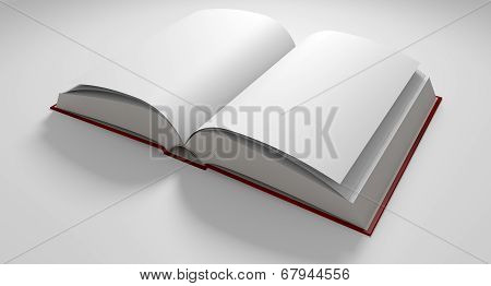 Blank Paged Book Open
