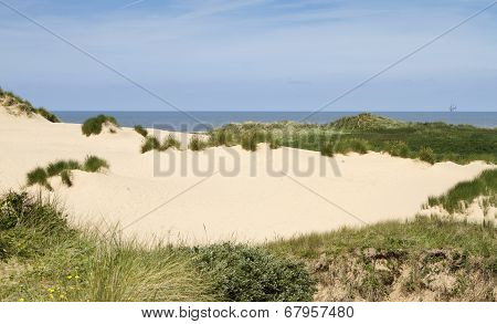 Sand dunes and grasses at Formby beach