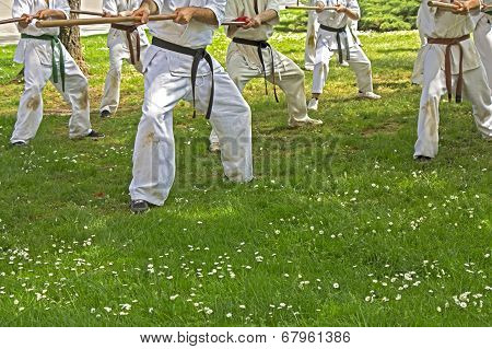 Taekwondo With Sticks