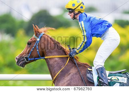 Jockey And Race Horse From The Side At The Nationaldags Galoppen In Gardet